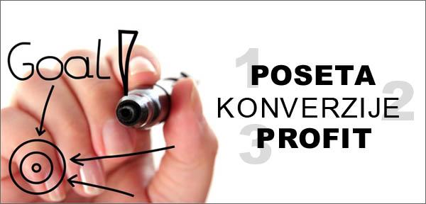 Posete konverzije i profit cilj sajta