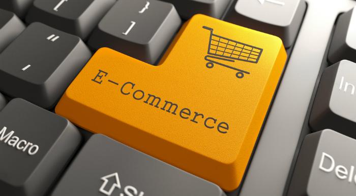 E-commerce & Entrepreneurship program školovanja   Više od 50 online kurseva