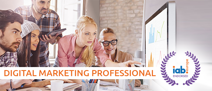 Digital Marketing Professional program