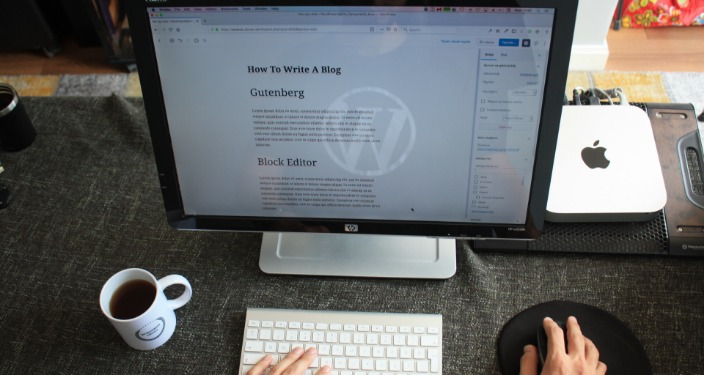 WordPress instalacija CMS
